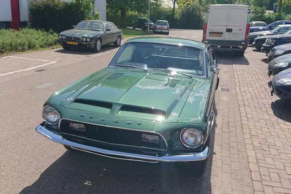 Ford Mustang Shelby 500GT